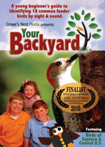 Your Backyard #1, Common Feeder Birds
